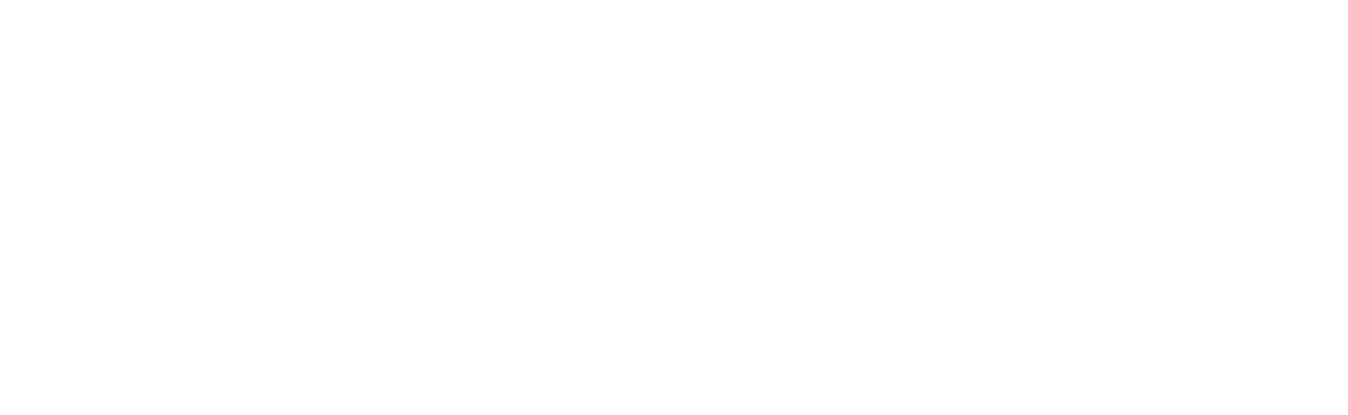 Aegis Protective Services